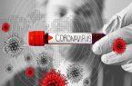 فاکتورهای پرخطر اصلی تاثیرگذار بر شدت بیماری کووید ۱۹ مشخص شد