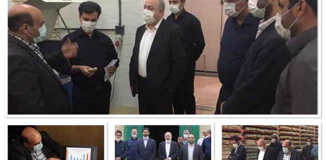 مدیر مجتمع مس آذربایجان: عملیات اکتشافی در محدودههای مستعد شمالغرب با تمام توان دنبال میشود