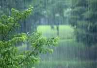 کاهش ۴۲ درصدی بارش های امسال